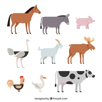 Классический набор сельскохозяйственных животных с плоским дизайном