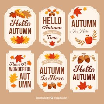 葉とドングリの秋のバッジ