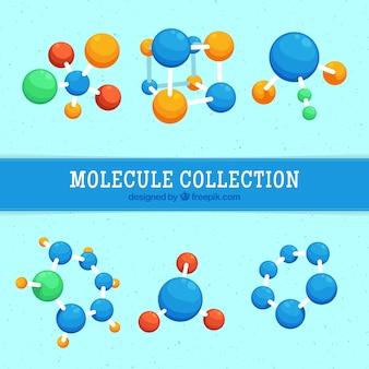 着色分子のセット