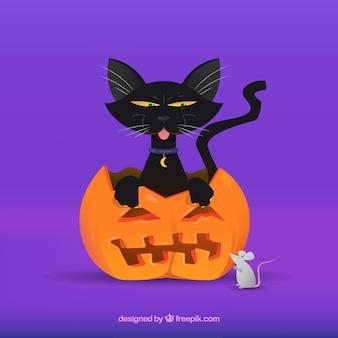 Прекрасная черная кошка и мышь