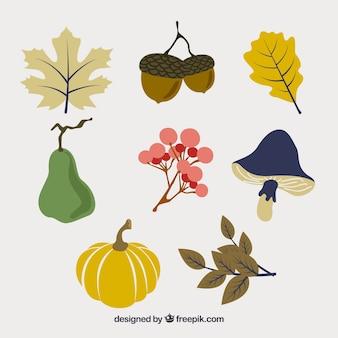 秋の要素のカラフルなパック