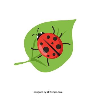 てんとう虫のベクトル