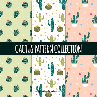 Прекрасная коллекция моделей кактусов