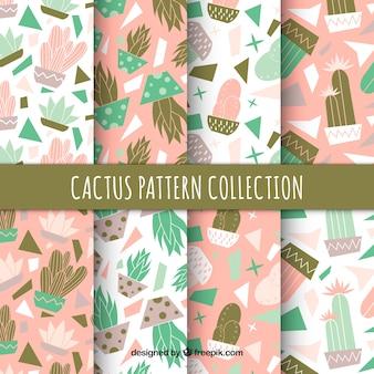 Современный пакет прекрасного рисунка кактуса
