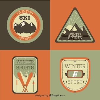 Коллекция лыжных значков