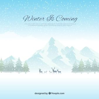 冬は平らな背景になる