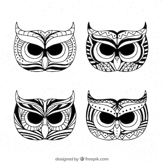 フクロウの頭のコレクション
