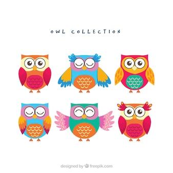 Коллекция смешной совы