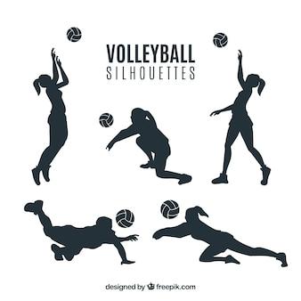 Волейбол цветные силуэты единые