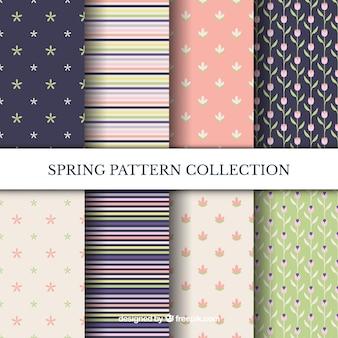 現代の春のパターンのパック