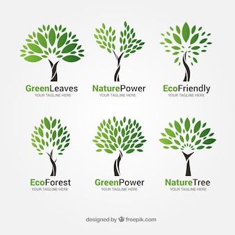 Коллекция логотипов деревьев в плоском стиле