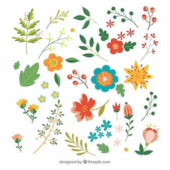 手描きのスタイルでカラフルな花のセット