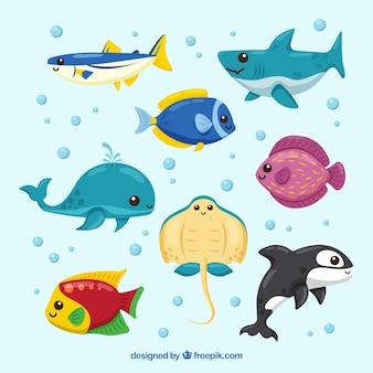 手描きのスタイルでカラフルな魚のセット