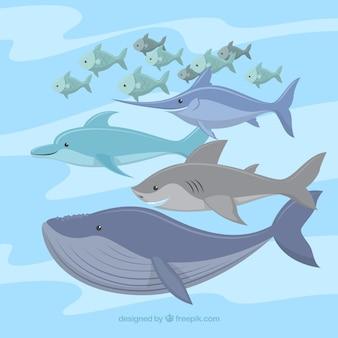 フラットスタイルのカラフルな魚のセット