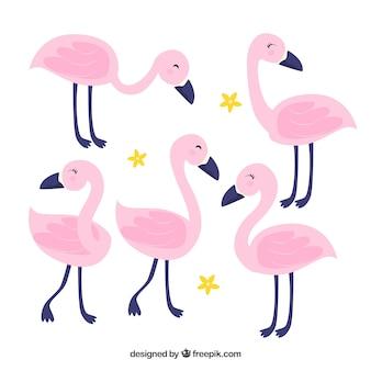 Коллекция плоских фламинго в разных позах