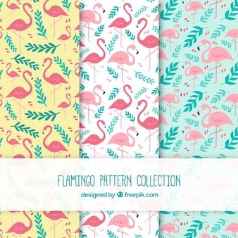 Набор фламинговых узоров с растениями