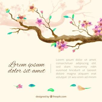 桜の背景と水彩の花
