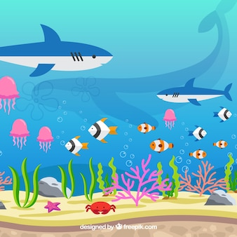 Подводный фон с различными морскими видами