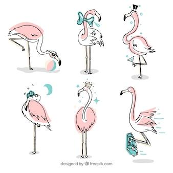 異なる姿勢でピンクのフラミンゴのセット