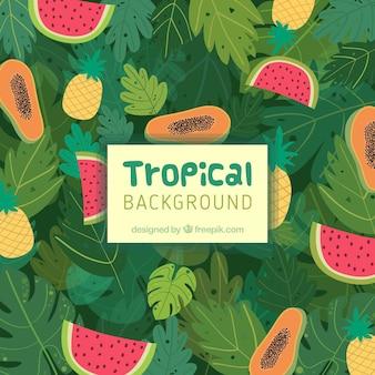 さまざまな果物を持つ熱帯の背景