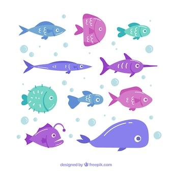 手描きのスタイルでカラフルな魚のコレクション