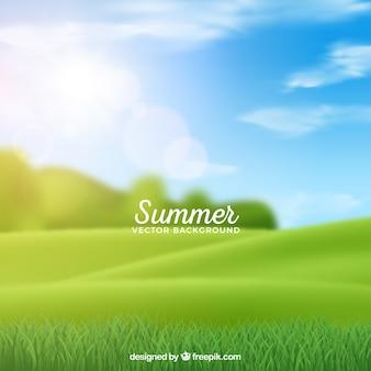 ぼんやりした牧草地の夏の背景