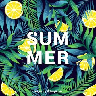 植物とレモンを持つ夏の背景
