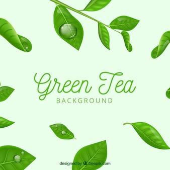 Фон из чайных листьев с реалистичным стилем