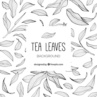 Фон из чайных листьев с ручным рисунком