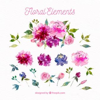 Прекрасный набор акварельных цветочных элементов