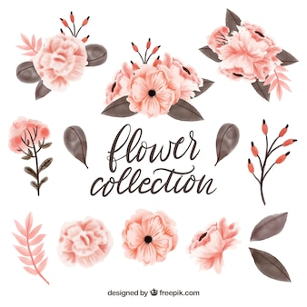 素敵な水彩の花の要素コレクション