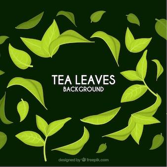 現実的なスタイルの茶葉の背景