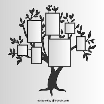 壁にフレームが付いている木