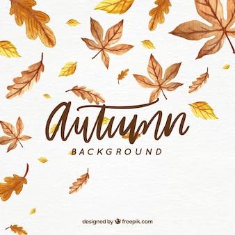 葉のある秋の背景