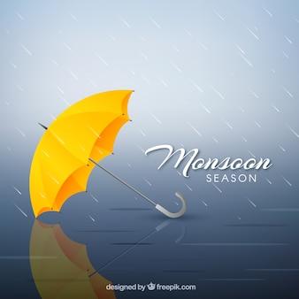 現実的なデザインのモンスーン季節構成