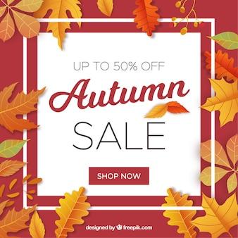 葉のある秋の販売の背景