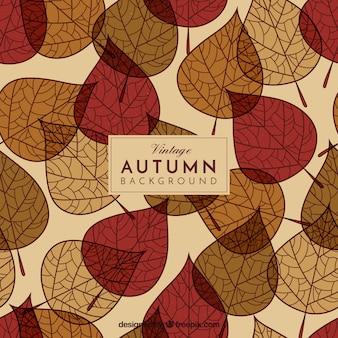 素敵な手が秋の葉の背景を描いた