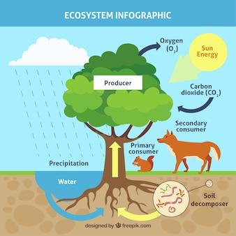 樹木によるインフォグラフィック・エコシステムのコンセプト