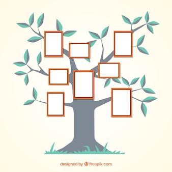 Плоское дерево с рамами на стене