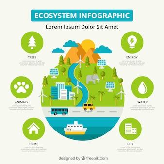 生態系のインフォグラフィックス