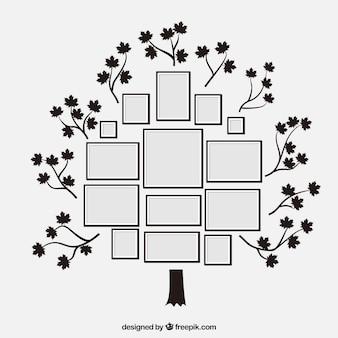 Прекрасное плоское дерево с фоторамками