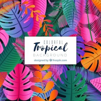 フラットなデザインのカラフルな熱帯の背景