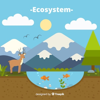 生態系の背景