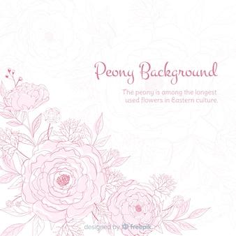 Природа фон с милой цветы пиона