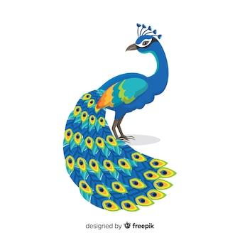 クリエイティブな孔雀のデザイン