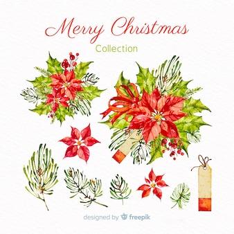 クリスマスの花のコレクション
