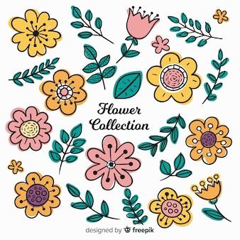Прекрасная коллекция рисованных цветов