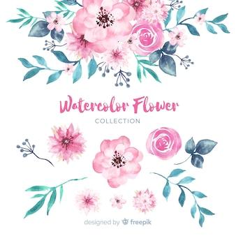 Коллекция прекрасных акварельных цветов