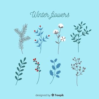 冬の花のコレクション