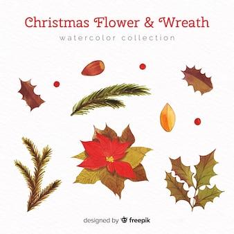 クリスマスの花と花輪の水彩コレクション